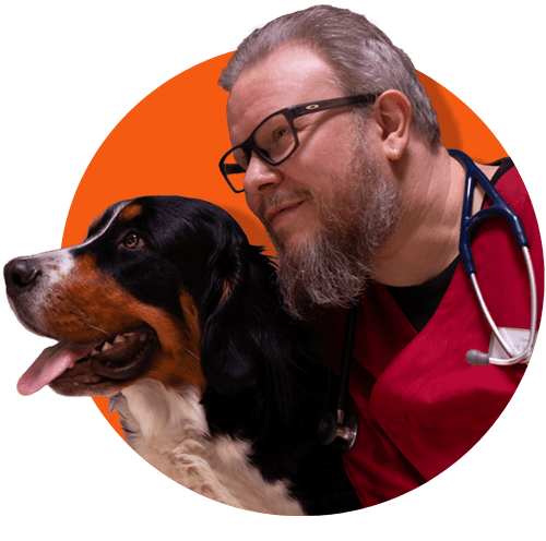 Tierarzt Landau Pfalz